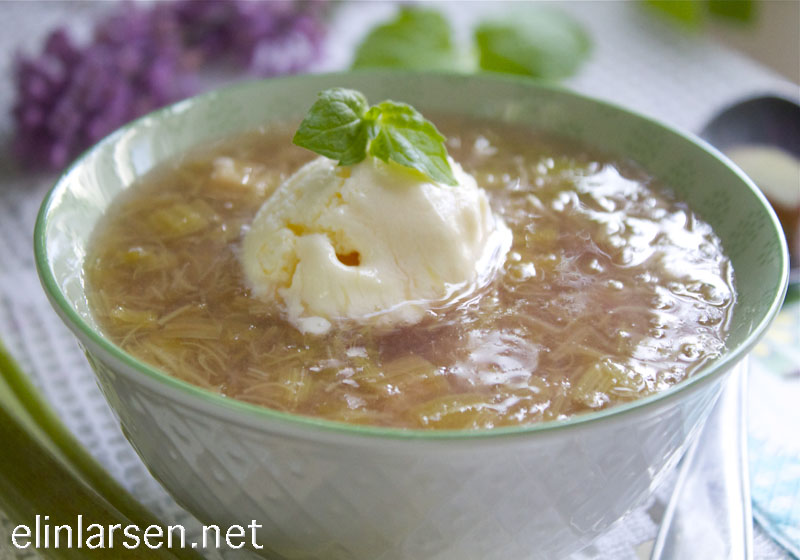 Hjemmelaget rabarbrasuppe med vaniljeis