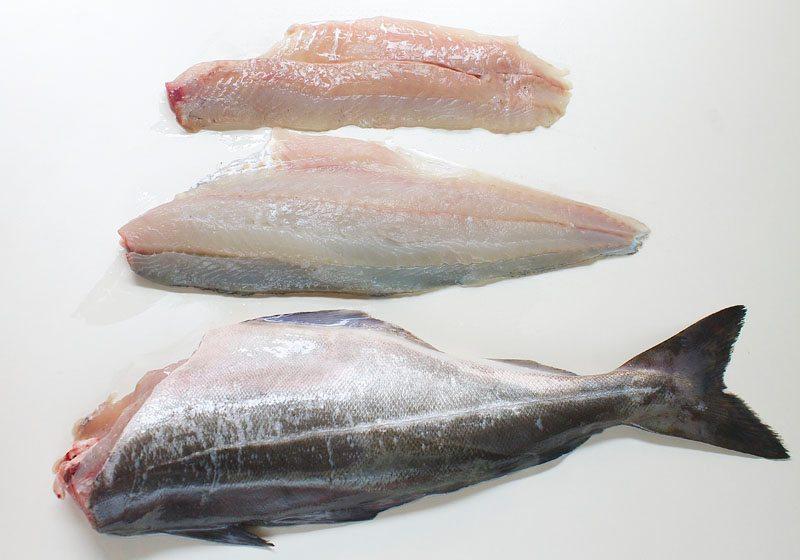sei fisk